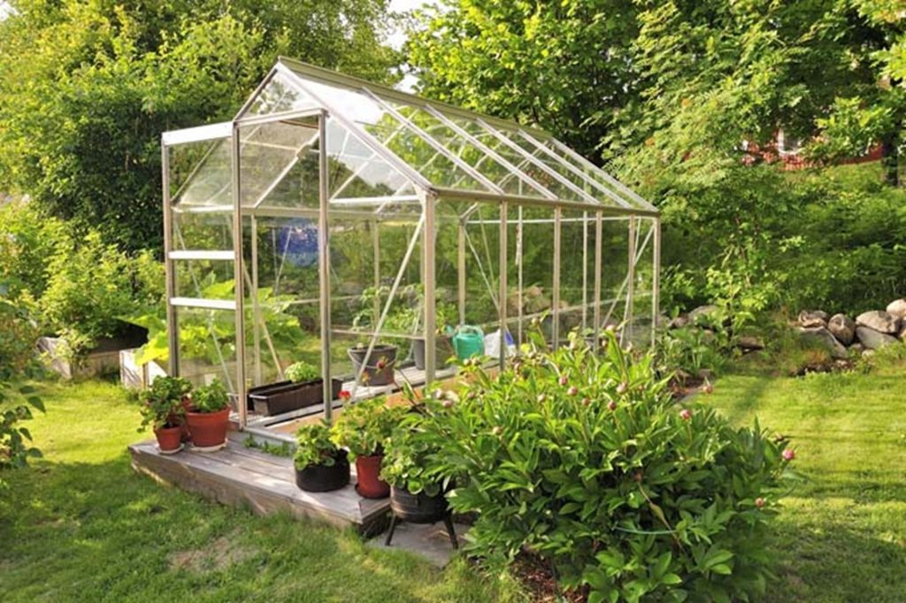 what to plant in a greenhouse in louisiana